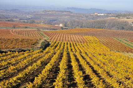 Basic introduction to La Rioja