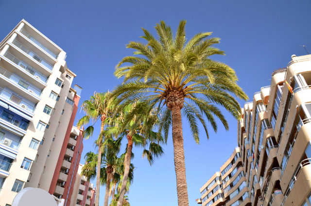 Turnover continues to grow in the Spanish property market