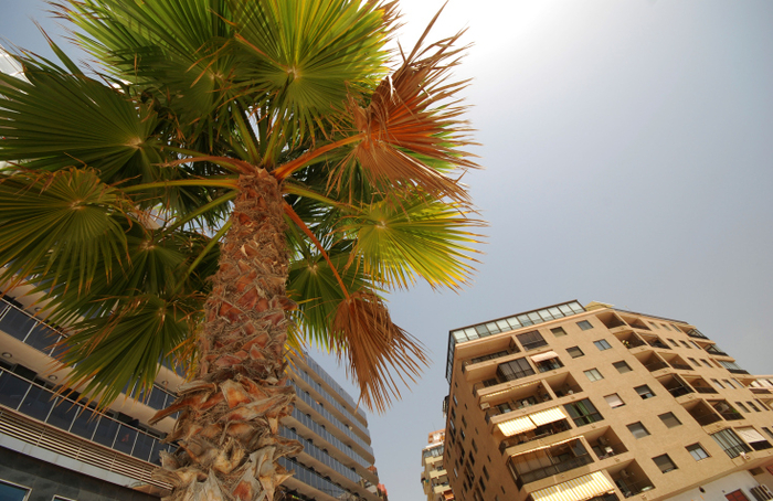 Spanish property sales rising as prices edge upwards
