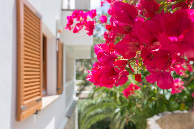Tinsa report fourth consecutive month of rising Spanish property prices