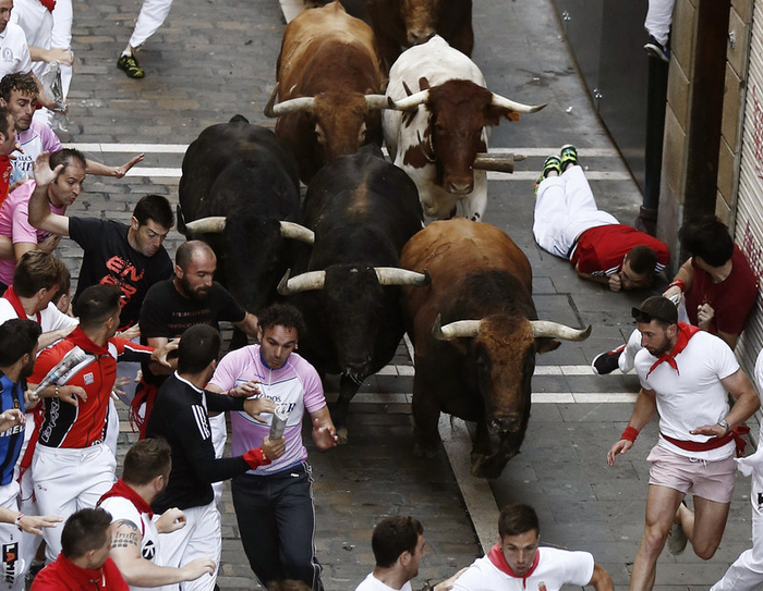 None gored in the fifth Pamplona bull run of 2016