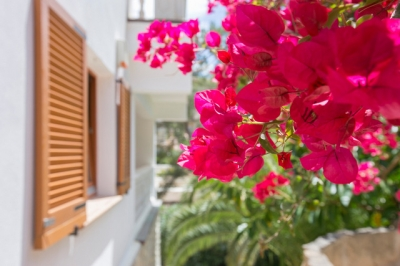 Spanish property sales running at highest level in five years