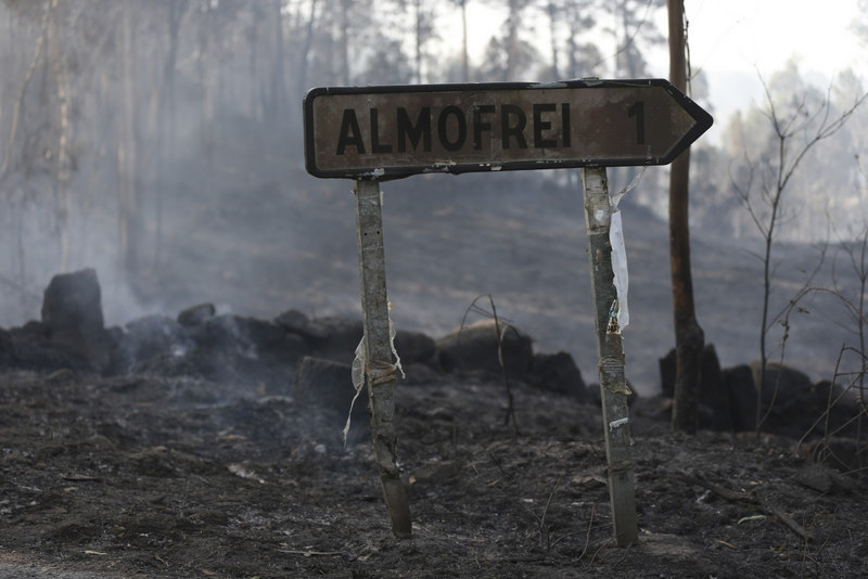 Pontevedra arsonist believed to be responsible for 1200 hectares of fire damage