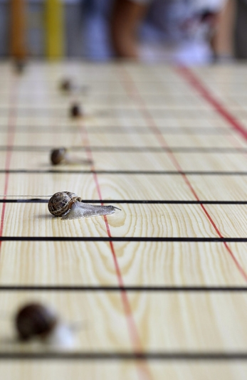 Turca storms to victory in La Rioja snail race