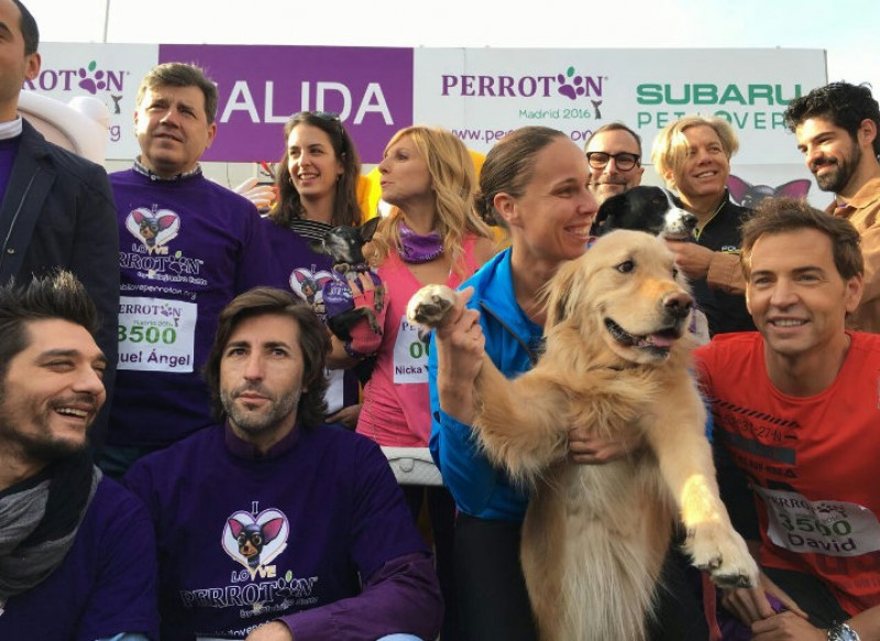 3,500 dogs take part in Madrid canine marathon