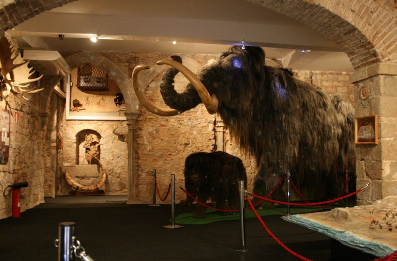 Barcelona mammoth museum closes down
