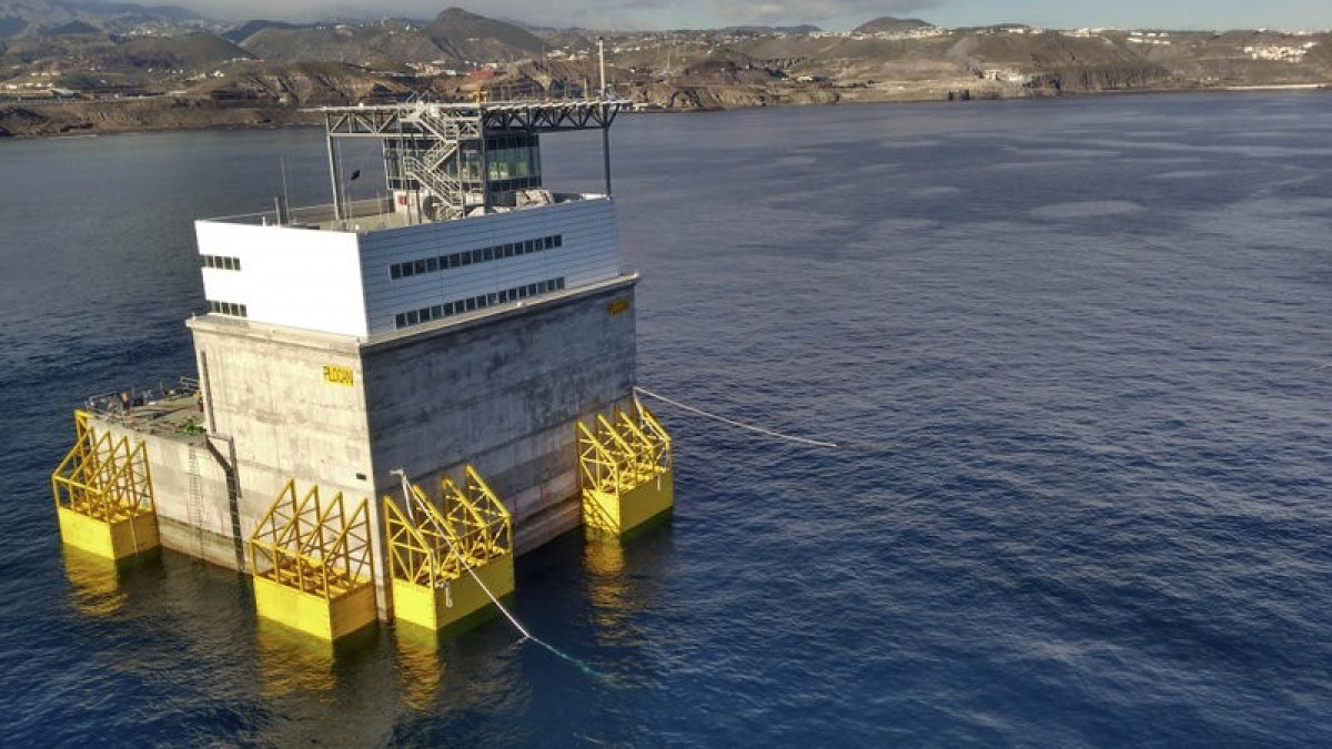 Giant floating lab moored off Gran Canaria as angel shark studies advance