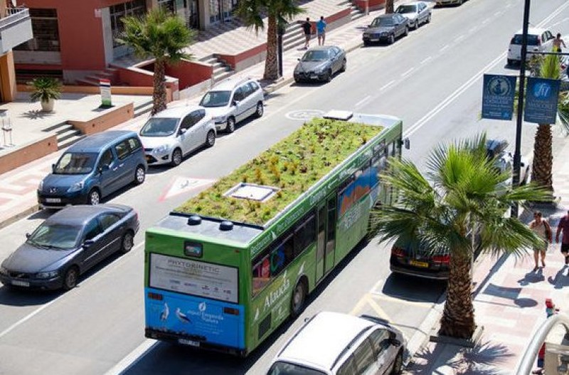 Madrid Mayoress advocates rooftop gardens on buses