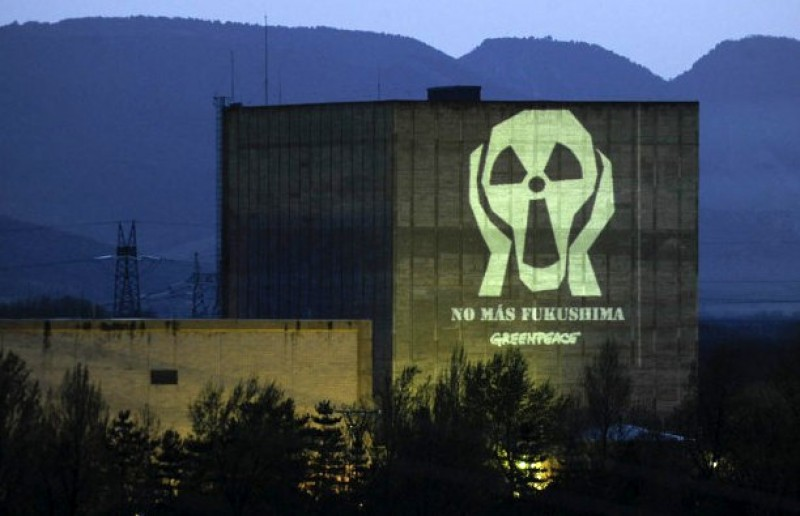 Veteran Burgos nuclear power station could reopen in a year