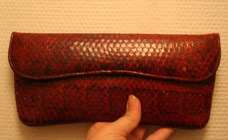 Spanish Police commissioner investigated for snakeskin handbag imports
