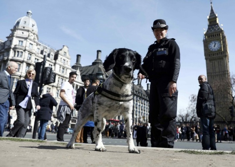 Britain reviewing security at parliament after deadly attack