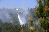 Warm weather brings an early start to the Galicia wild fire season