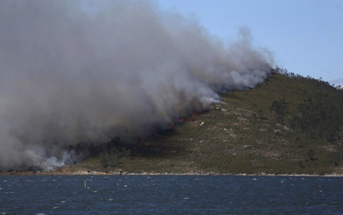 Coruña forest fire brought under control