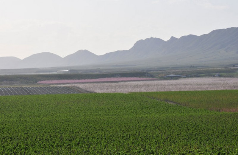 Understanding water and the drought in Murcia and the Segura basin