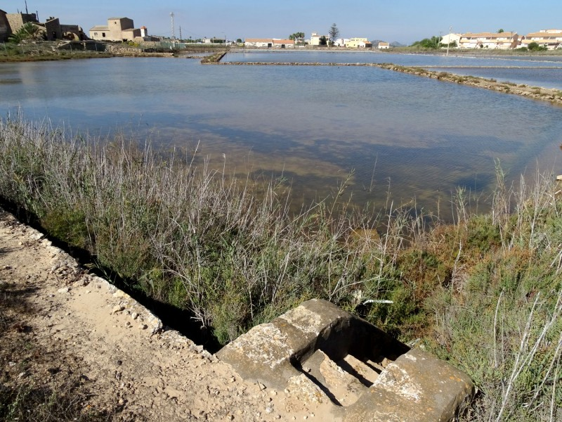 Catalan rice growers fund ANSE project to recover the salt flats of Marchamalo