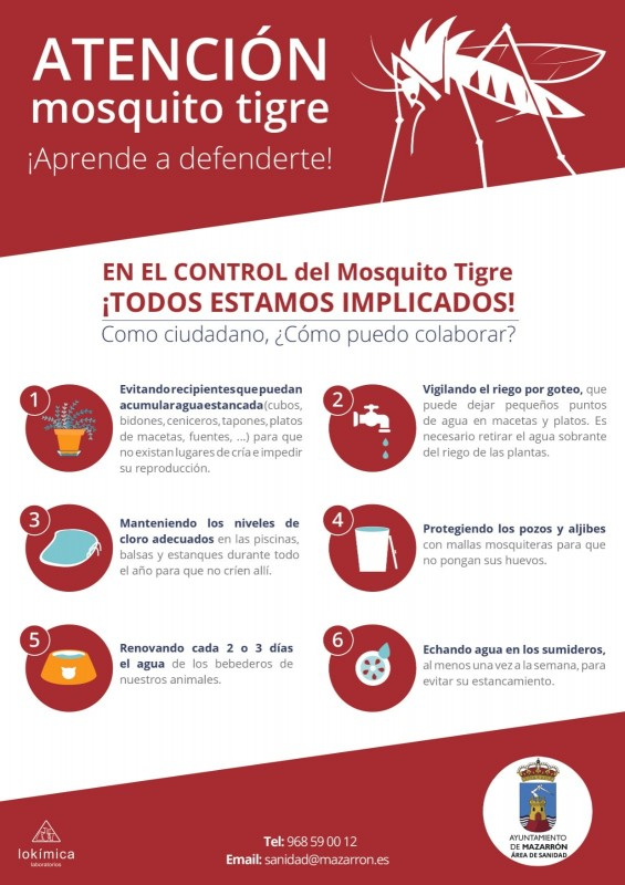 <span style='color:#780948'>ARCHIVED</span> - Regional surveillance program finds no tiger mosquitos in Mazarrón