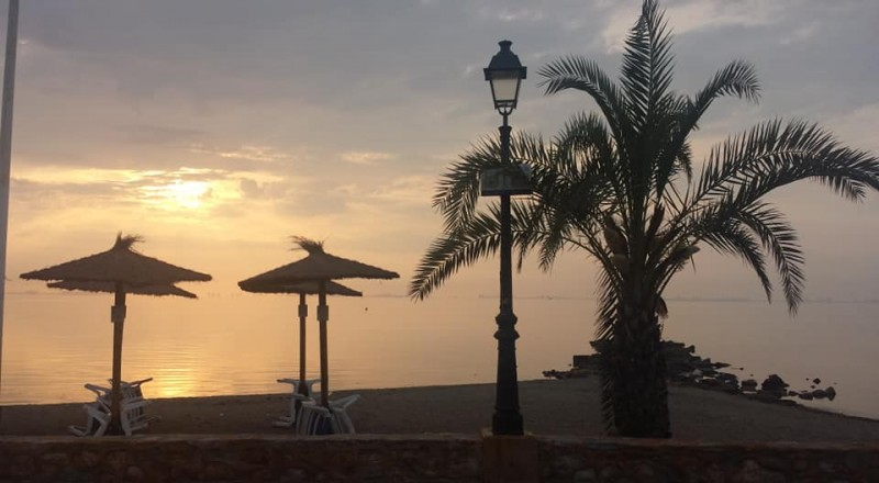 <span style='color:#780948'>ARCHIVED</span> - First 'tropical' night of the summer in the province of Alicante