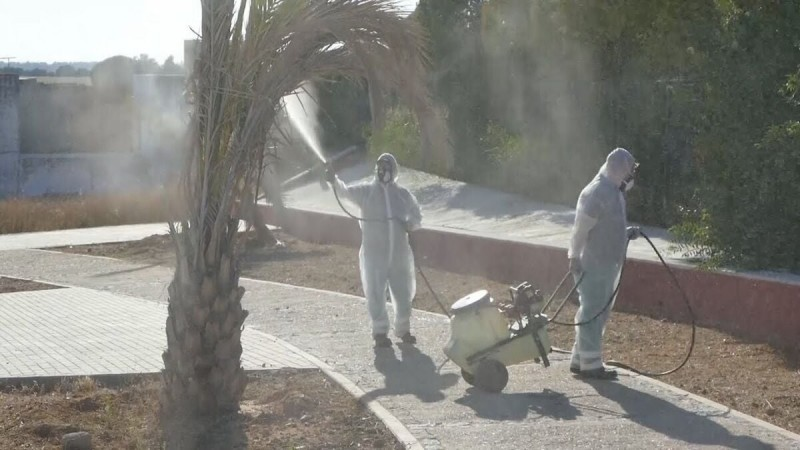 <span style='color:#780948'>ARCHIVED</span> - First case of West Nile virus of the year confirmed in Seville