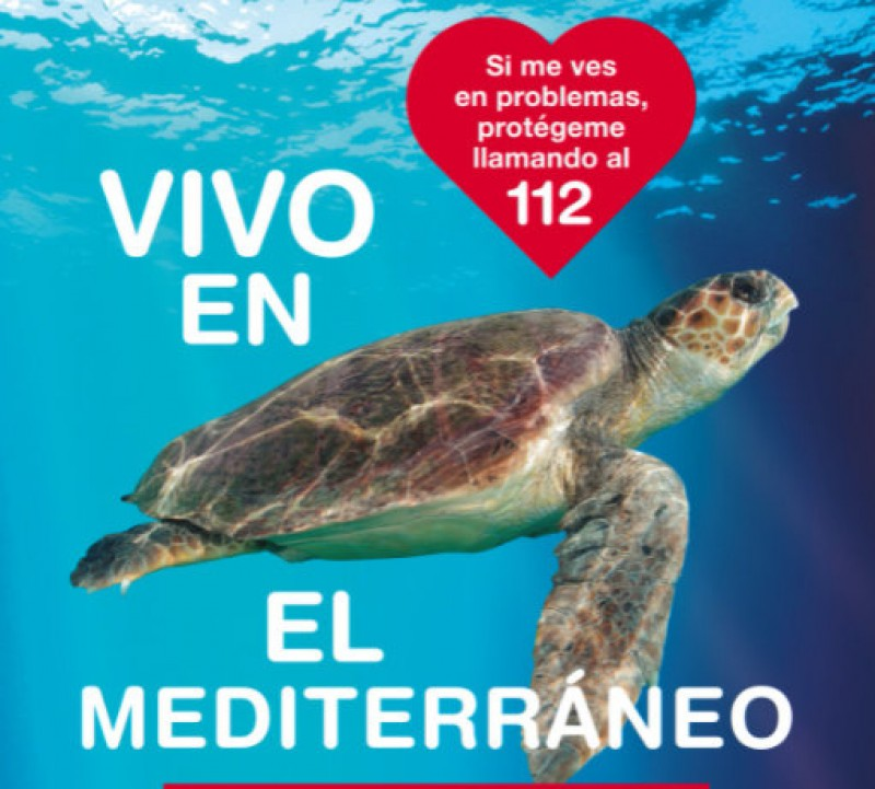 <span style='color:#780948'>ARCHIVED</span> - Loggerhead turtle released into the Med in Calblanque after vets amputated an injured flipper