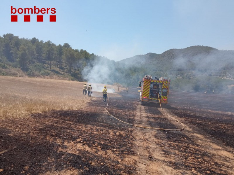 Third of fires in Catalonia caused by discarded cigarette butts