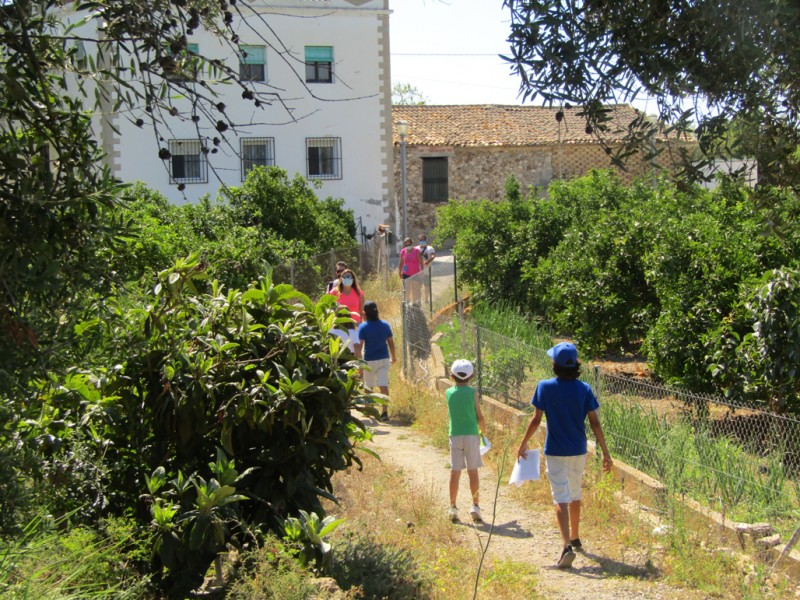 <span style='color:#780948'>ARCHIVED</span> - Free guided tours of Altea throughout August