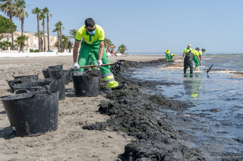 <span style='color:#780948'>ARCHIVED</span> - Murcian government presents paperwork to undertake Mar Menor recovery projects
