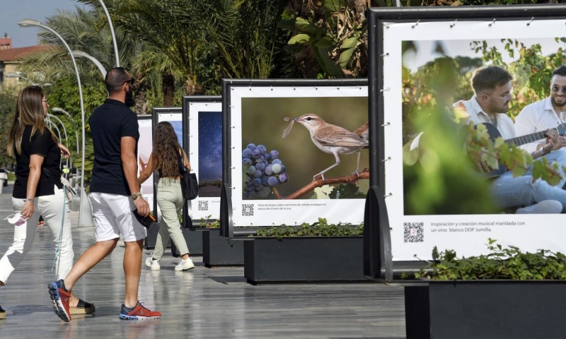 <span style='color:#780948'>ARCHIVED</span> -  Open-air exhibition in Murcia city shows the beauty of Jumilla winemaking